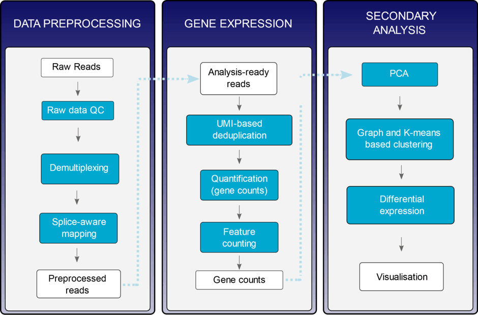 Figure data analysis Service page   Single Cell sequencing