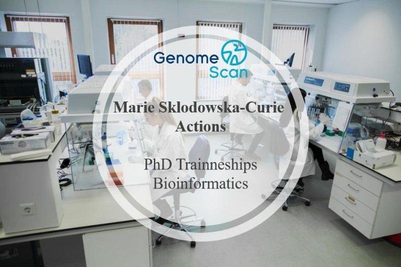 GenomeScan to offer two Bioinformatics PhD traineeships as part of the EU Horizon 2020 program