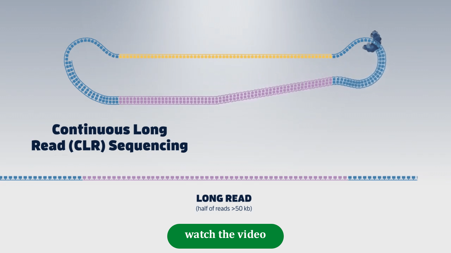 Long read video Product Page   Long Read Sequencing