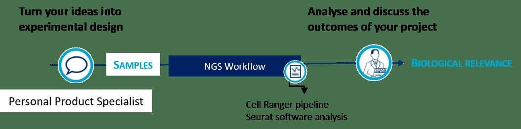 workflow scRNAseq Single cell RNA seq